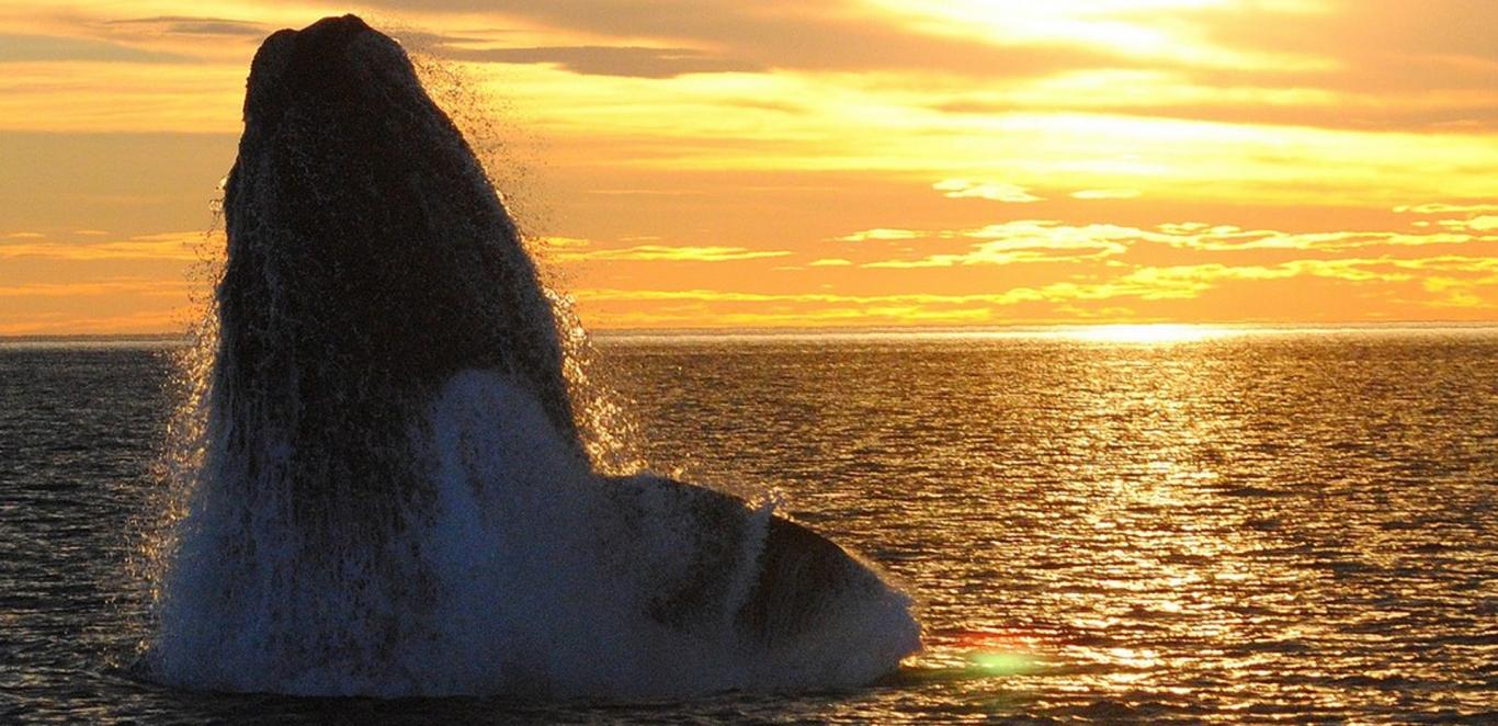 Patagonia 12 nights