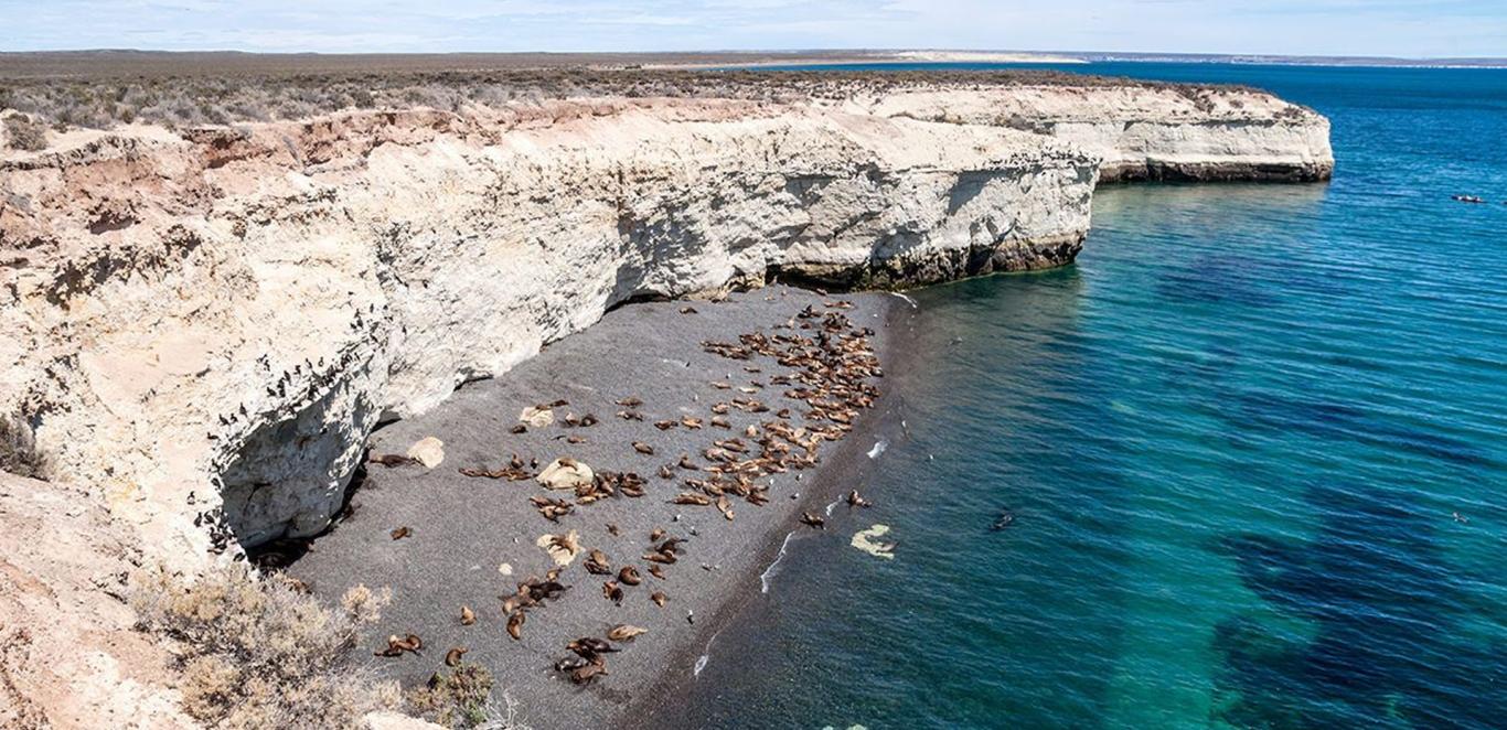 Cerro Avanzado y Punta Loma - Puerto Madryn